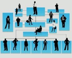 O que é administração direta e indireta?