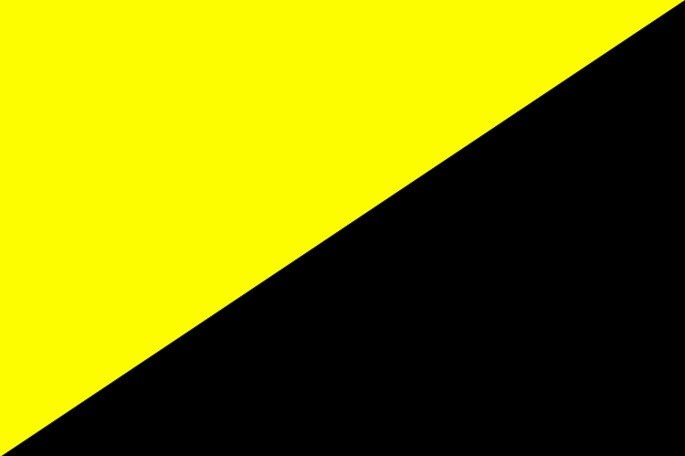 anarcocapitalismo bandeira