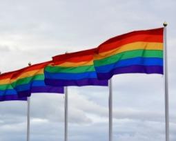 O que é homofobia?